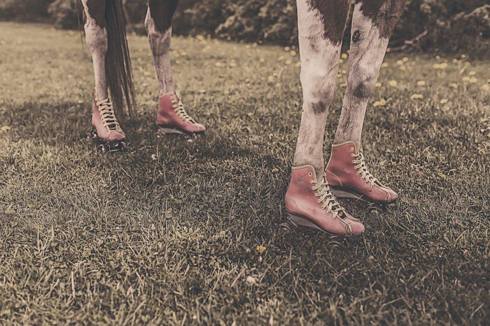 Podkovy nebo boty?