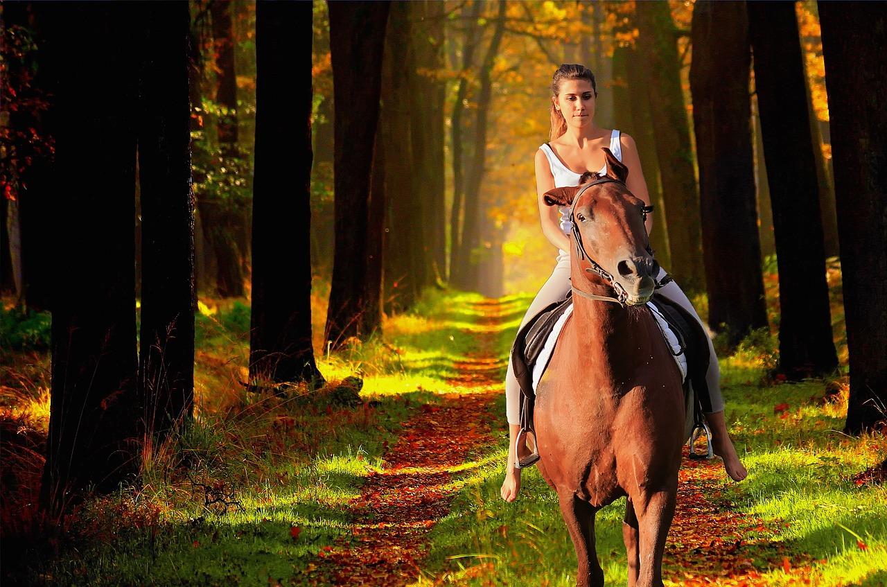 Podzimní ježdění na koni
