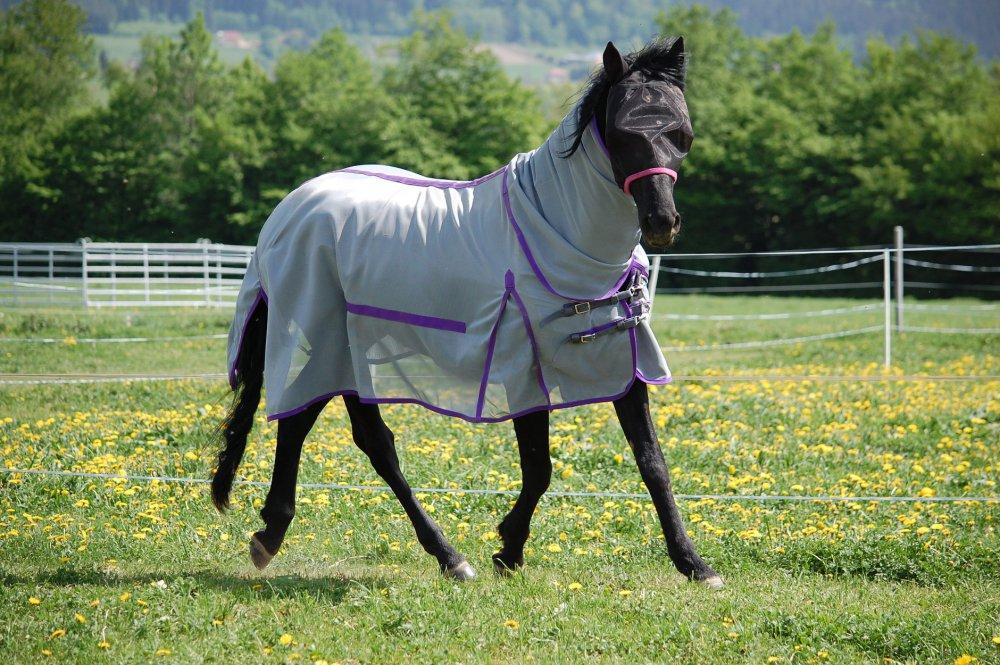 Síťová deka Horsea Combo Strong