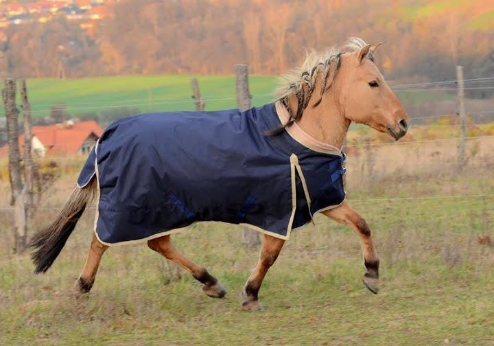 Výběhová deka