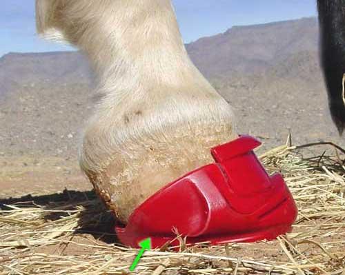 Kopyto s vysokými patkami botu deformuje