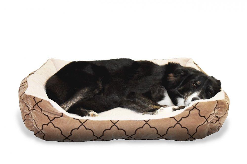 Ideální pelíšek je pohodlným místem pro relax